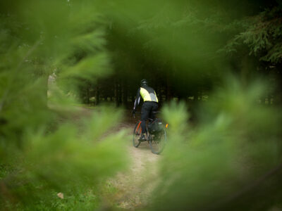 Bike Commuter with pannier in forest